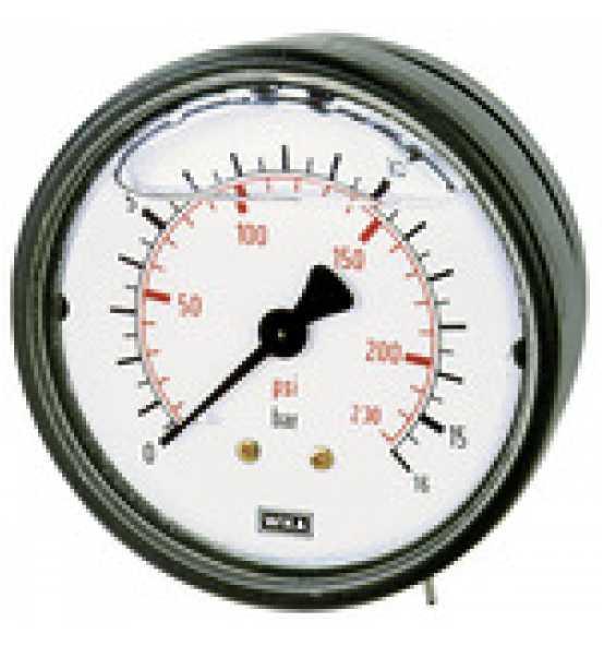 riegler-glyzerinmano-kunststoff-g-1-4-hinten-zentr-1-0-0-bar-63-p995448